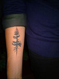 Douglas Fir Tree simple tattoo