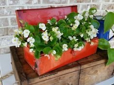 my finds for flowers using repurposed rustic reused reclaimed stuff, container gardening, gardening, repurposing upcycling, MY OLD RED TOOLBOX FLOWERS