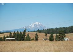 Klickitat County Real Estate | TUCKER HILL RD, GOLDENDALE, WA 98620 Mt Adams views, 20 acres $ 89K