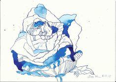 Mein Lieblingsblume ist – oh wie langweilig – die Rose! Aber ich mag auch sehr die vielen Amaryllis und die Lilien, die ich zur Einweihung bekommen habe. Die Blüten der Amaryllis als au…
