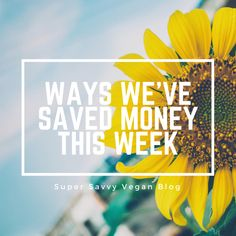 Ways we've saved money this week – Super Savvy Vegan Vegan Blogs, Have Time, Saving Money, Perspective, Create Yourself, Positivity, Attraction, Save My Money, Perspective Photography