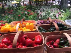 Farmer's Market Fresh!  (we miss the warmer weather and these bright colors)