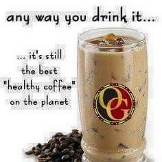 Which is your favourite Organo Gold flavour and how do you like to drink it? Brown Coffee, I Love Coffee, My Coffee, Coffee Drinks, Java Tea, Summertime Drinks, Coffee Recipes, Root Beer, Healthy Choices