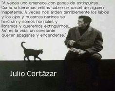 Just perfect. -Cortazar-
