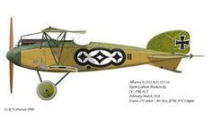 Albatros D.III (Oeffag) ... by Bob Pearson