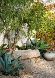 stone slab bench - small boulders - gravel - agaves - pepper tree - grasses which create seating space. This idea might work to create interest at the FRONT of the SOMA VIDA building ( but in a smaller scale) Dry Garden, Gravel Garden, Garden Stones, Boulder Garden, Back Gardens, Outdoor Gardens, Pepper Tree, Drought Tolerant Garden, Xeriscaping