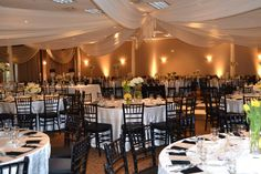 Black and Yellow Reception