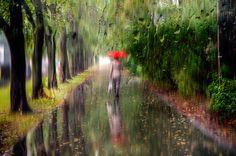 Photograph вот и осень... by Ed Gordeev on 500px