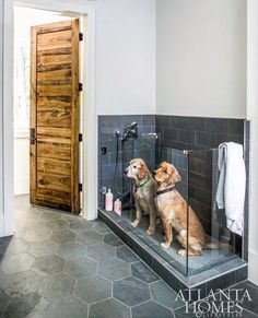 "312 Likes, 19 Comments - Mimi Robinson (@thepaintedchandelier) on Instagram: ""I love dog friendly design & this is such a great and useful one! Love the dark tile for hiding…"""