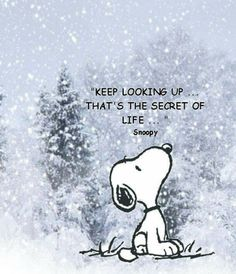 THE SECRET OF LIFE!!