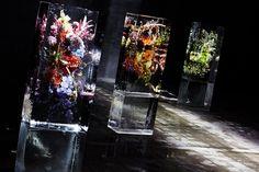 "Azuma Makoto's ""Iced Flowers"" at Dries Van Noten - NYTimes.com"