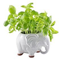 Elephant plant pot from IdeaVintage