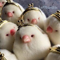 adorable coin purses shaped like stout little birds.