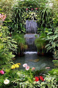 Tropical garden Ideas, tips and photos. Inspiration for your tropical landscaping. Tropical landscape plants, garden ideas and plans. Tropical Backyard Landscaping, Pond Landscaping, Ponds Backyard, Garden Pool, Backyard Waterfalls, Backyard Ideas, Modern Backyard, Large Backyard, Lush Garden