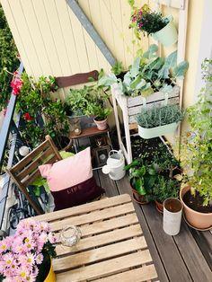 Outdoor Spaces, Outdoor Decor, Balcony Garden, Salt Of The Earth, Dream Garden, Terrazzo, Home Decor Styles, Interior Architecture, Garden Design