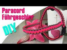 DIY PARACORD FÜHRGESCHIRR FÜR HUNDE   Paracord Tutorial   Einfaches Hundegeschirr   HUNDEKANAL - YouTube