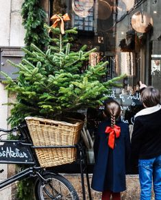 Botanic Bleu (@botanicbleu) • Instagram photos and videos Winter Holidays, Happy Holidays, French Country Christmas, Christmas Greenery, Cooking Tools, Wonderful Time, In This Moment, Photo And Video, Instagram