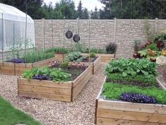 Ideas to Inspire: Vegetable Gardens