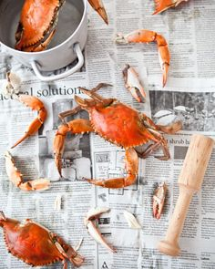 """Maryland Crabs.  Oh, how I miss sitting around a picninc table full of crabs and family.  Messy and delicious."""