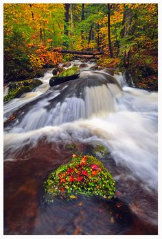 Jackrabbit Falls - Upstate New York---Never heard of this place but it looks beautiful. Looks like my David has a lot place to bring me this summer. Summer Vacation Spots, Best Vacation Destinations, Best Vacations, Hiking Club, Lake George Village, Fun Winter Activities, Upstate New York, Winter Hiking, Lake Life