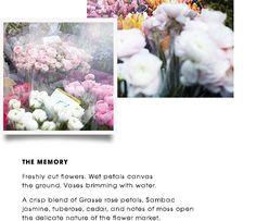 THE MEMORY | Freshly cut flowers. Wet petals canvas the ground. Vases brimming…