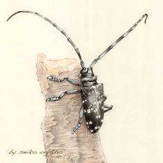 カミキリムシ Pictures Of Insects, Pictures To Draw, Colored Pencils, Arrow Necklace, Jewelry, Jewellery Making, Jewerly, Colouring Pencils, Jewelery