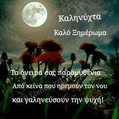 Beautiful Pink Roses, Greek Quotes, Good Night, Decor, Scenery, Nighty Night, Decoration, Decorating, Good Night Wishes