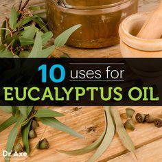 Eucalyptus oil uses  http://www.draxe.com #health #Holistic #natural #essentialoils
