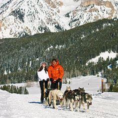 Jackson Hole Iditarod Sled Dog Tours - Jackson Hole, WY