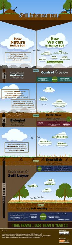 Biotic Earth Infographic Shows How Soil Building Techniques Can Encourage Plants to Grow