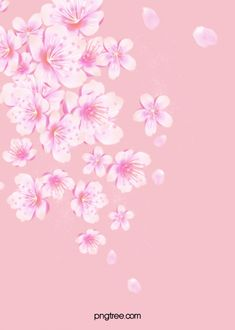 Pink And Beautiful Flowers Fresh Nail Advertising Poster Background Material White Background Hd, Flower Background Images, Flower Backgrounds, Colorful Backgrounds, Pink Walpaper, Best Flower Wallpaper, Phone Wallpaper Design, Cartoon Flowers, Design Floral