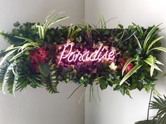 This sign says it all with it's bright neon light and vibrant blue color! Set the Paradise Neon sign on display in any room in the house! Diy Neon Sign, Neon Wall Signs, Neon Signs Home, Neon Light Signs, Neon Home Decor, Custom Neon Signs, Neon Sign Bedroom, Neon Flowers, Salon Signs