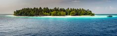 Maldives - maldives tropical paradise beach crystal water white sandy beach coconut tree island with Donhi