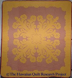 More than fifty thousand contemporary and traditional quilts at your fingertips, plus journals, essays, galleries, lesson plans and more featured on the Quilt Index. Hawaiian Quilts, Pua, Traditional Quilts, Quilt Designs, Applique, Gallery, How To Make, Style, Scrappy Quilts