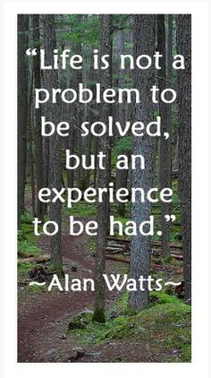 Enjoy the best Alan Watts quotes. Quotes by Alan Watts, British Philosopher. This is the real secret of life -- to be completely engaged with what you are doing in the here and now. And instead of calling it work, realize it is play. Quotable Quotes, Wisdom Quotes, Quotes To Live By, Me Quotes, Change Quotes, Attitude Quotes, Alan Watts, Great Quotes, Inspirational Quotes