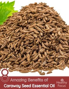 Benefits of Caraway Seed Essential Oil Include : Respiratory Issues, Skin care, Stress, Digestive Health, Heart Health and Inflammatory Bowel Disease. Caraway Seeds, Essential Oil Uses, Herbal Medicine, Natural Living, Natural Health, Natural Remedies, Heart Health, Benefit, Herbalism