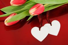 Image and video hosting by TinyPic - Valentine's Day
