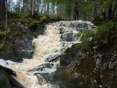 Katajapuron virallisesti nimetön vesiputous sijaitsee keskellä korpimetsää Naarvan kylän alueella Ilomantsissa.