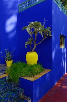 Photos of Marrakech: the souks, the Koutoubia streets, visit of the Majorelle Garden, the Menara and meals on the Djemaa el Fna square Moroccan Garden, Jardin Decor, Pintura Exterior, Blue Garden, Garden Art, Outdoor Living, Outdoor Decor, Landscape Architecture, House Colors