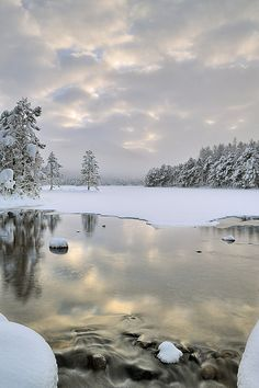 Before the Light, Cold - Loch An Eilean, Cairngorm, Scotland