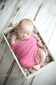 nancy alcott baby + child photography