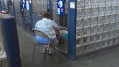 Woman Reads To Shelter Dogs So They Know They're Not Alone