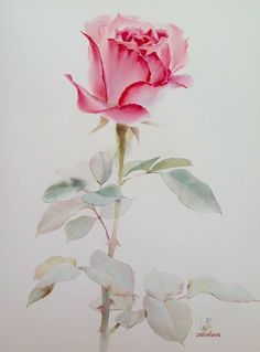 Watercolor without drawing by LaFe Watercolor Rose, Watercolor Artwork, Watercolor Artists, Watercolor Cards, Flower Art Images, Arte Floral, Art Drawings, Illustration, Rose Paintings