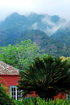 Finca La Principal Isla de La Palma-Canarias La Palma Travel, Spain Travel Guide, Holiday Places, Island Design, European Countries, Canario, Island Beach, Canary Islands, Beautiful Islands