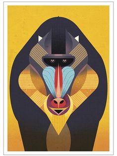 Dieter Braun Mandrill Postkarte