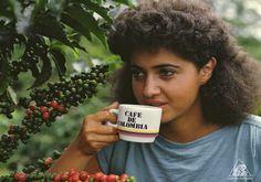 Historia del Café   Café de Colombia