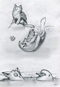 Owl Griffin Various Baths by RobtheDoodler on deviantART