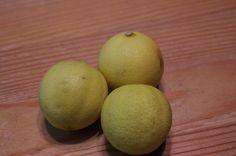 "Mr. Greens Welt: Kumquats ""Lemon"""