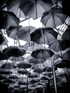 umbrella black and white photography Amazing Photography, Art Photography, Umbrella Photography, Rainbow Photography, Foto Picture, Arte Black, Umbrella Art, Black Umbrella, Matte Black