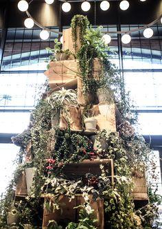YOKOHAMA VIVRE CHRISTMAS TREE – GREEN FINGERS